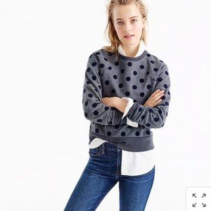 J Crew Oversized Velvet Polka Dot Sweatshirt XL